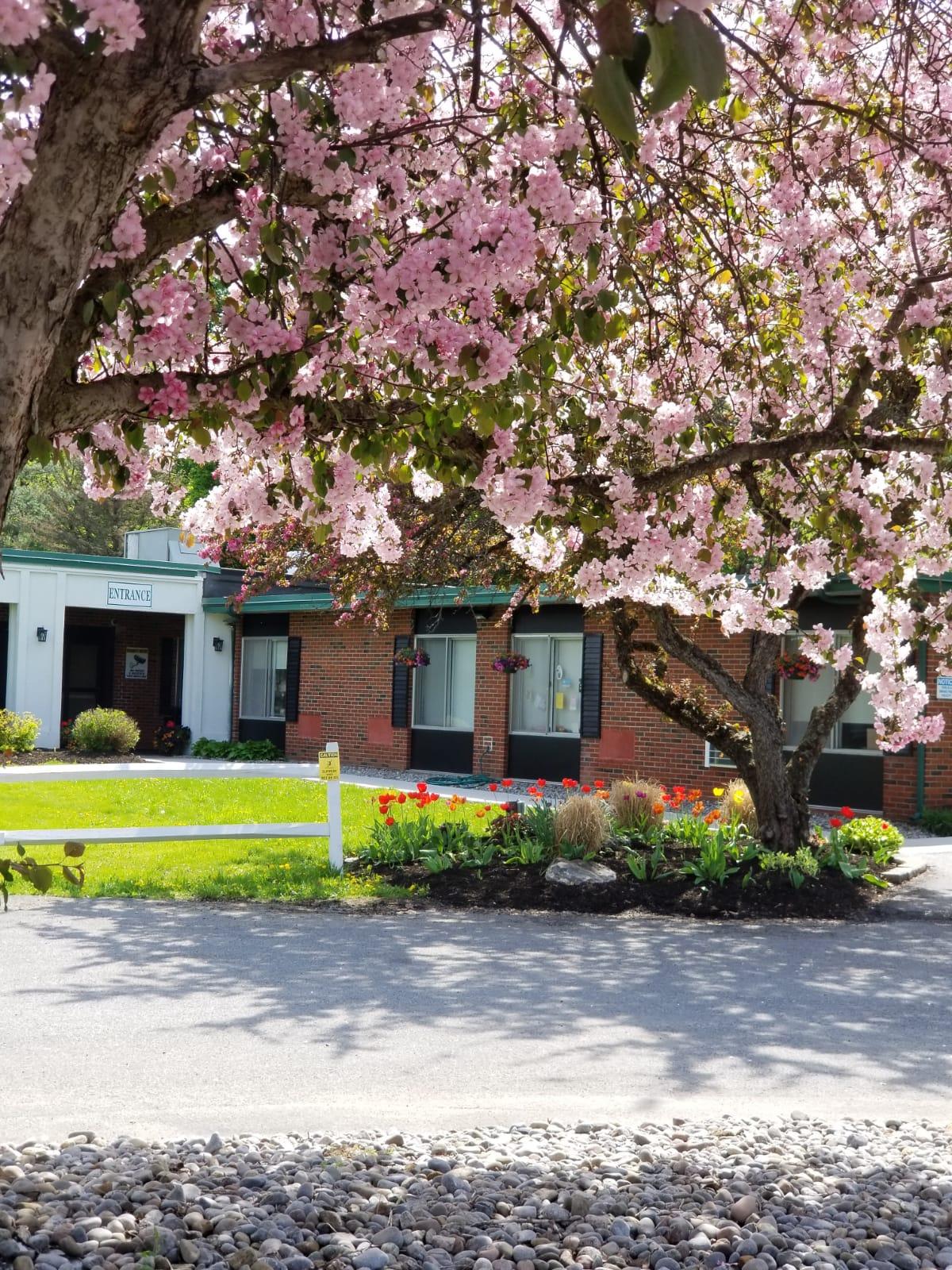 <span>Colonial Park</span> Rehabilitation and Nursing Center
